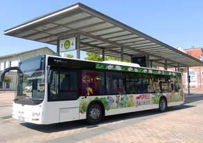 MAN Lios City der Verkehrsbetriebe Nordhausen am Busbahnhof (Bahnhofsvorplatz) Nordhausen 14.07.2018