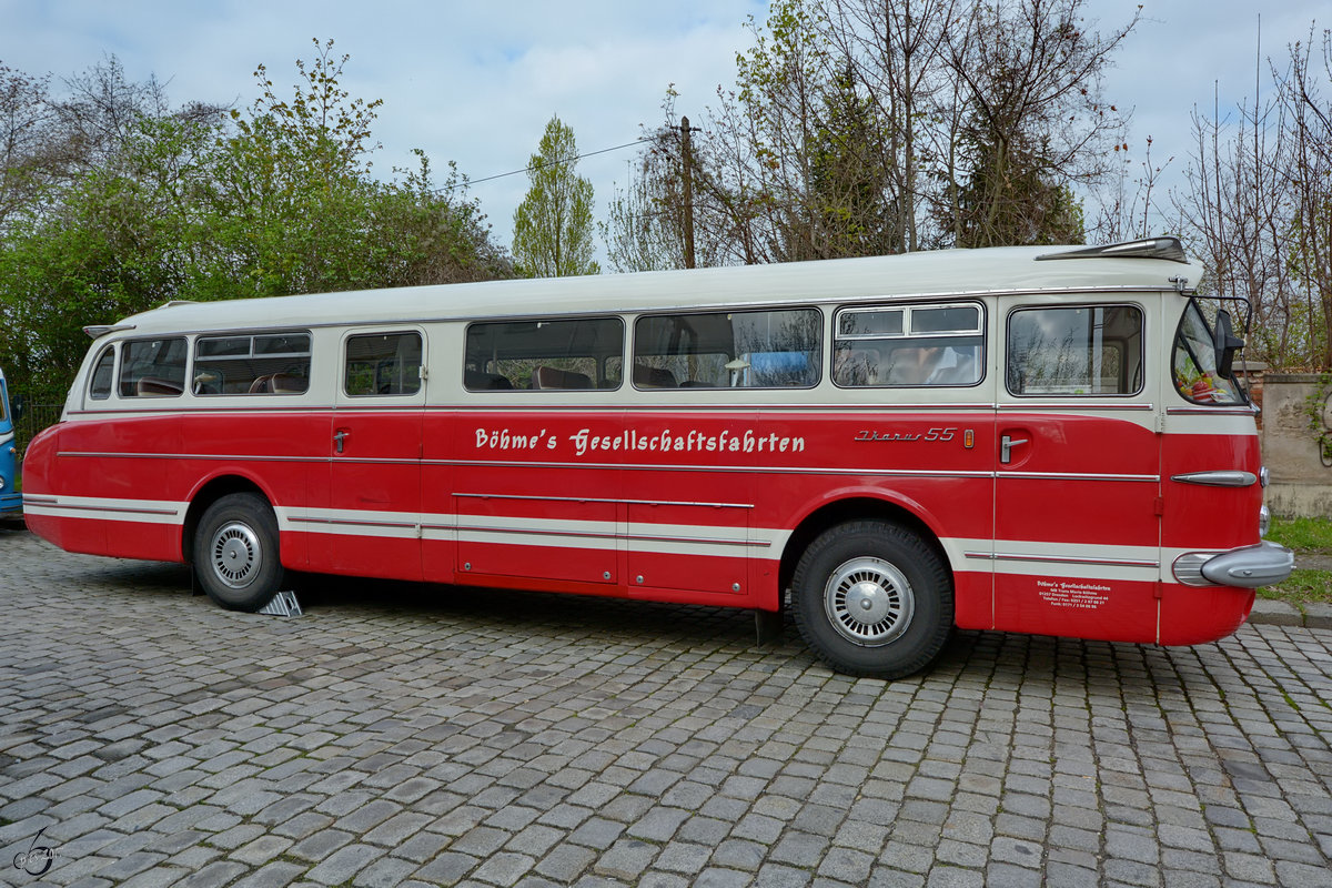 Ein Ikarus 55 im April 2017 in Dresden.