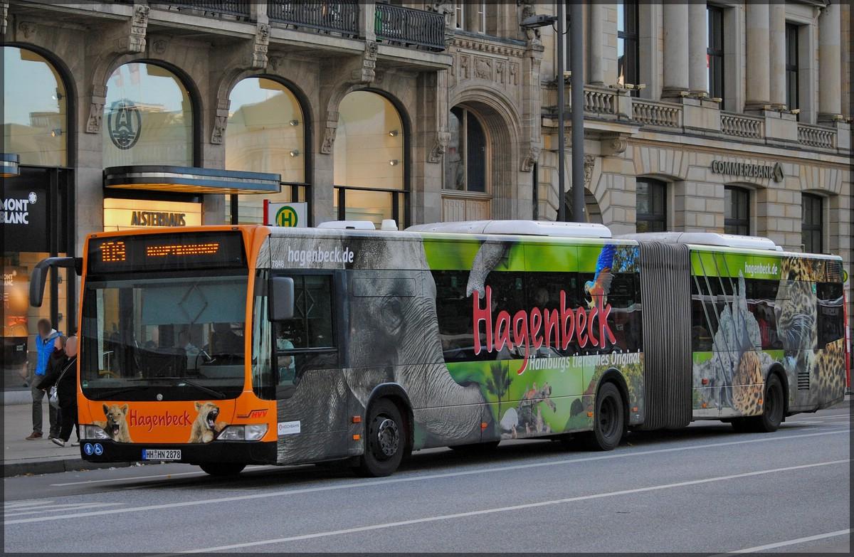 mercedes benz gelenkbus der hochbahn hamburg mit werbung f r den hagenbeck tierpark aufgenommen. Black Bedroom Furniture Sets. Home Design Ideas