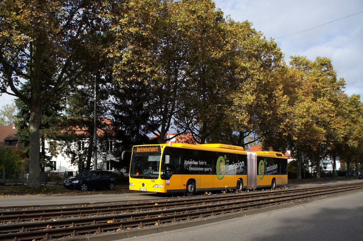 Gg Mainz